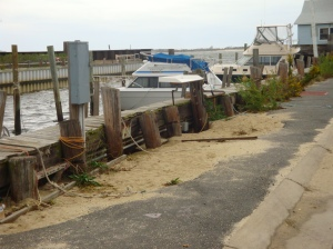 Capt Cove Marina before Sandy