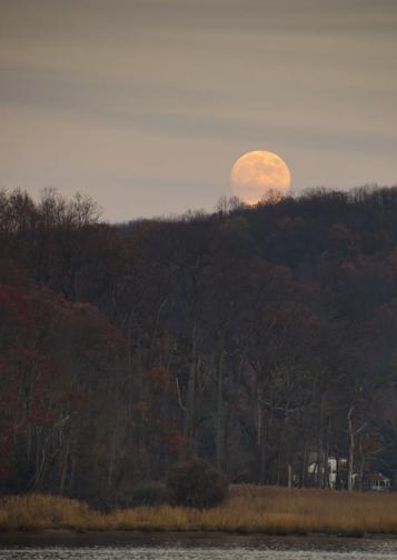 moon over hartshorne woods